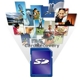 SD Card Recovery Software with Crack Key Free Download