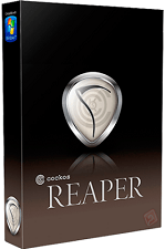 Cockos REAPER 5.94 + Portable + Key
