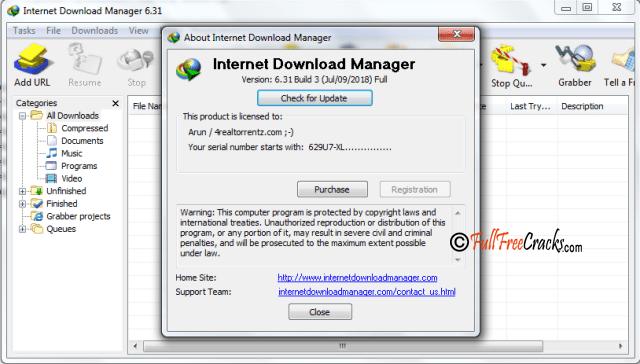 Internet Download Manager 6.31 build 3 Full version